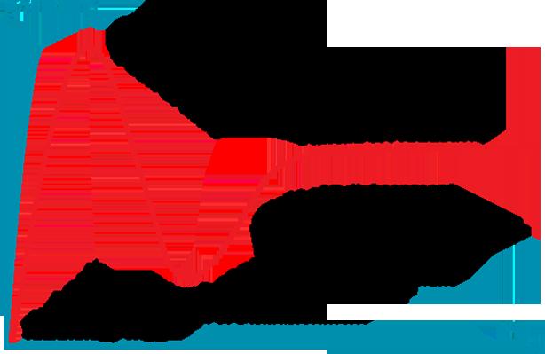 Ciclo de sobreexpectación de Gartner