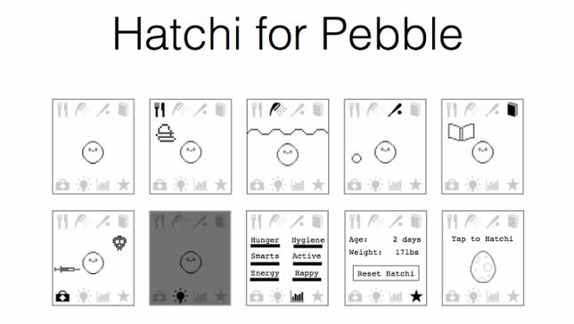 hatchi-on-pebble