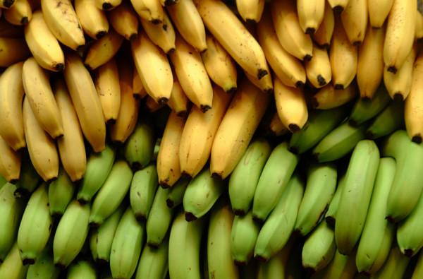 bill_gates_bananas